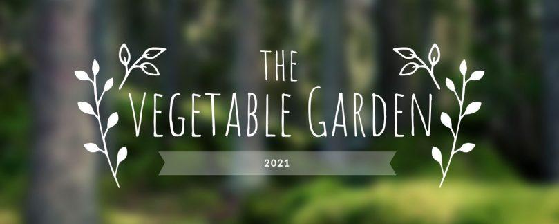 Garden Update: Feb 2021